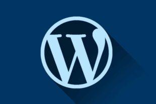 Wordpress logo die laat zien dat je met deze online cursus WordPress de basis van wordpress kunt leren