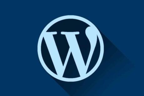 Leer in deze online basiscursus WordPress hoe je een eigen website maakt