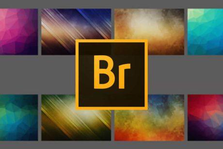 Leer alles over Adobe Bridge in deze Online Cursus Bridge CC
