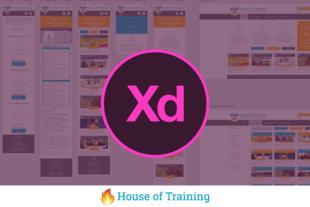 Leer in deze online cursus hoe je een ontwerp maakt van een website en hoe je deze test