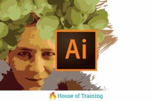 In deze online cursus Illustrator leer je hoe je de basis gereedschappen gebruikt om zelf logo's ontwerpen en huisstijlen te creeëren