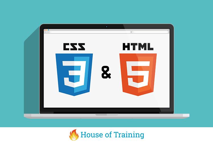 Leer in deze online cursus html en css hoe je zelf een website bouwt