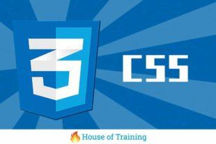 Leer in deze online cursus hoe je websites vormgeeft en designed met CSS