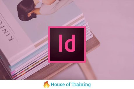 Indesign het dtp programma waarin je de vrijheid hebt creatief documenten op te maken