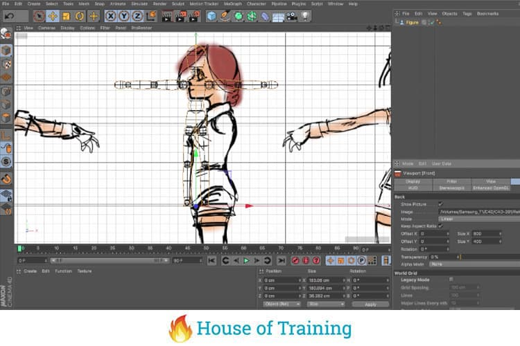 Leer een 3D anime karakter modelleren in Cinema 4D