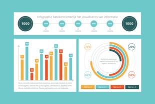 Afbeelding van de online cursus infographics maken