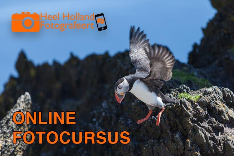 Leer in deze online fotocursus alles over fotografie