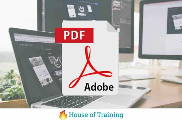 Leer alles over toegankelijke PDF met InDesign in deze online cursus