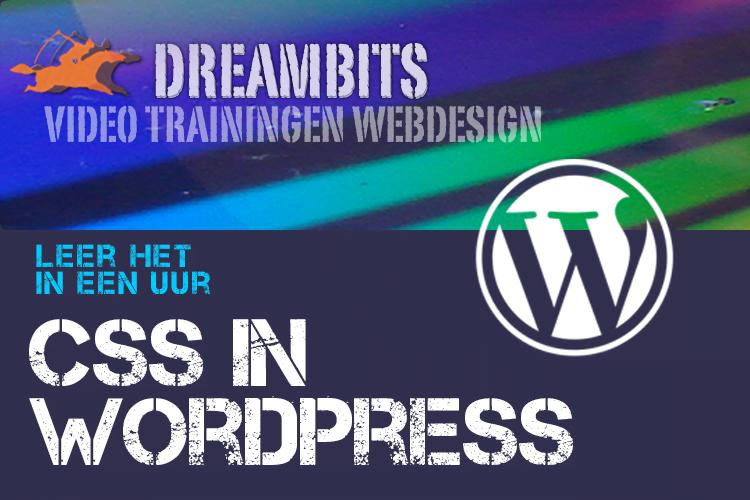 Leer hoe je CSS kan gebruiken om je WordPress website te stijlen.