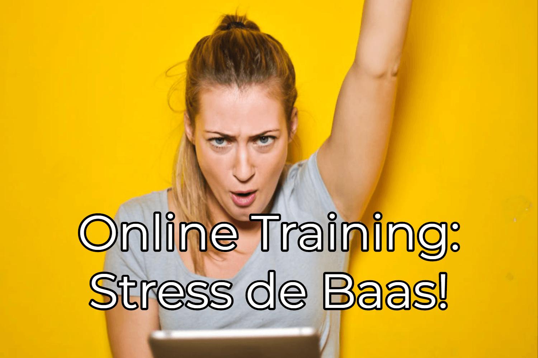 Leer stress de baas te worden in deze online training