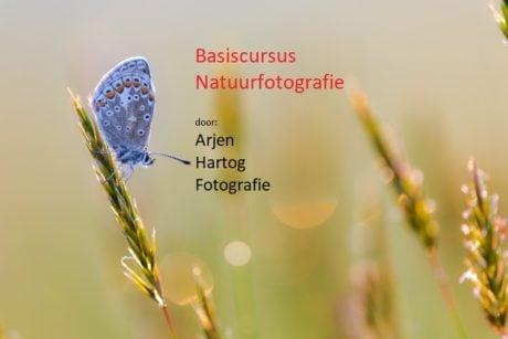 Online basiscursus natuurfotografie