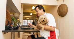 In dit artikel vind je 8 tips waarmee je productiever thuis kunt werken