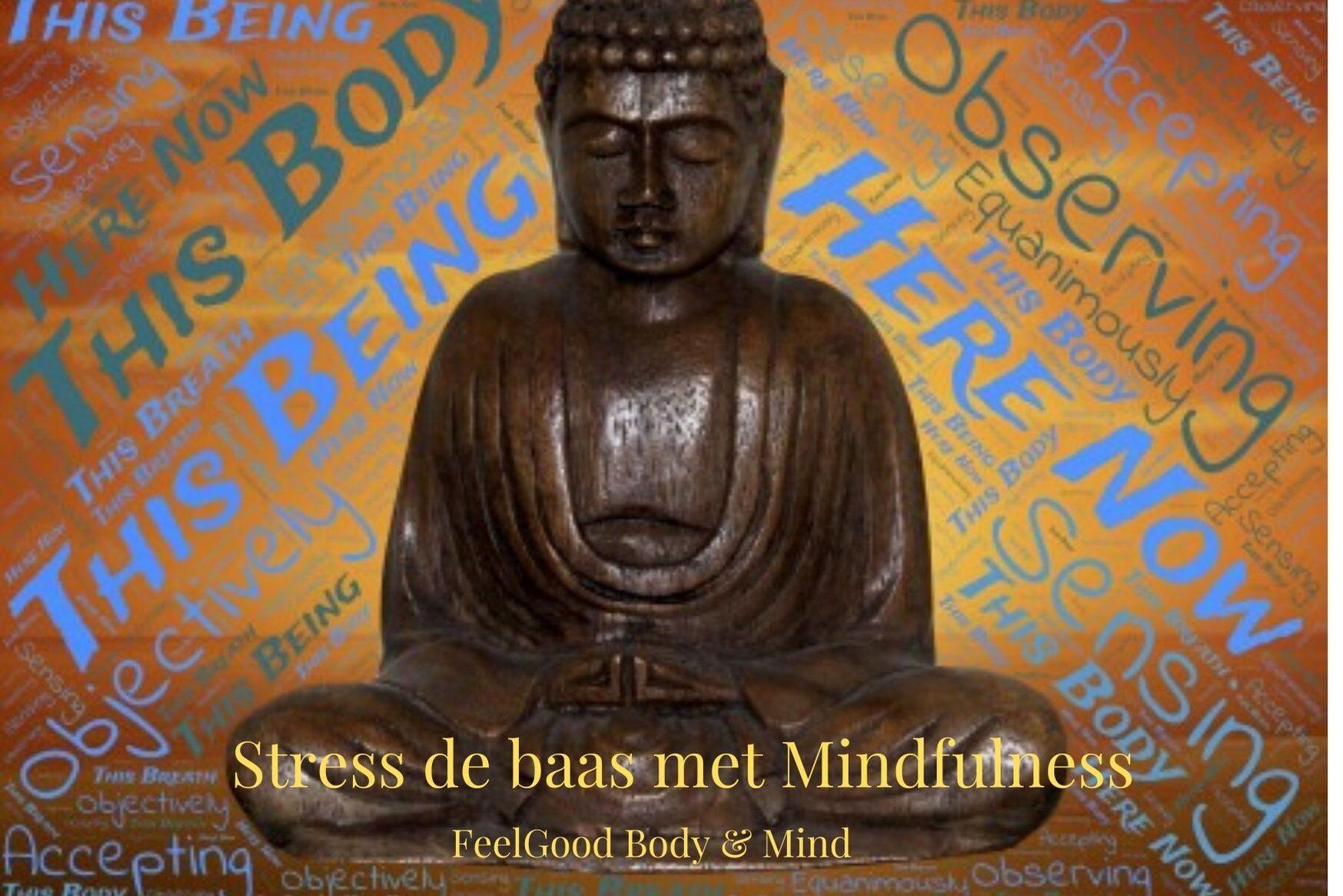In deze cursus word je de stress de baas met mindfulness