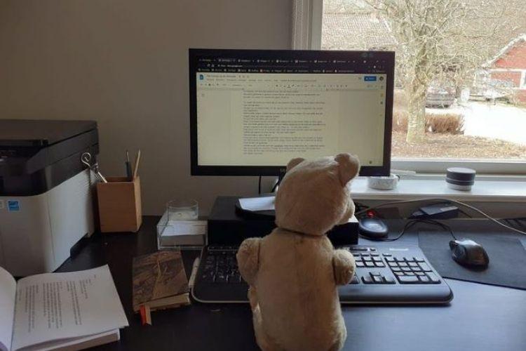 Online cursus creatief schrijven. Over inspiratie en efficientie